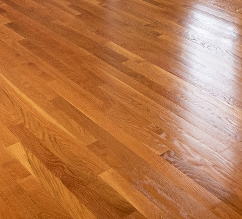 floor staining and polishing